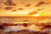 Coucher de soleil tropical coloré. — Photo