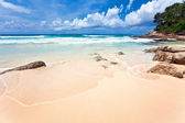 Exotic tropical beach. — Foto Stock