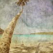 Exotic tropical beach in retro style — Stock Photo