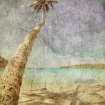 Exotic tropical beach in retro style — Stock Photo