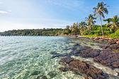 Praia tropical exótica. — Fotografia Stock