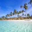 Stock Photo: Exotic tropical beach.