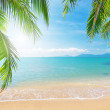 Beach with coconut palm and sea — Stock Photo #8613539