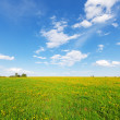 Green hill under blue cloudy sky whit sun — Stock Photo