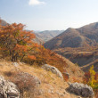 Autumn in mountain — Stock Photo #8698158