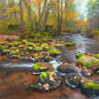 Beautiful cascade waterfall in autumn forest — Foto de stock #8749987