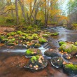 Стоковое фото: Beautiful cascade waterfall in autumn forest