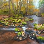 krásné kaskádové vodopád v podzimním lese — Stock fotografie