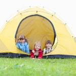Children in tent — Stock Photo #8703961