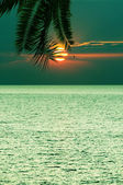Beautifull tropical sunset at sea — Stock Photo