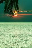 Beautifull tropical sunset at sea — Stock Photo