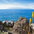 View of La Gomera from Tenerife. Canary Islands, Spain — Foto de Stock
