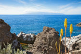 View of La Gomera from Tenerife. Canary Islands, Spain — Stock Photo