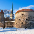 Stock Photo: Tallinn - capital of Estonia