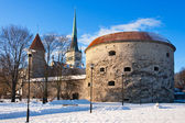 Tallinn - capital of Estonia — Stock Photo