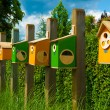 Colorful birdhouses — Stock Photo