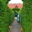 Stock Photo: Topiary archway entrance to house