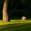 Lovers in the Park — Foto de Stock