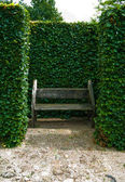 Bench in the old park — Stock Photo