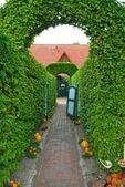 Topiary archway entrance to the house — Stock Photo