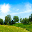 Landscape with trees grass and blue sky — Stock Photo #10559880
