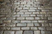 Street paved with cobblestone — Stock Photo
