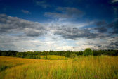 Green meadow under dramatic sky landscape — Stock Photo