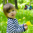 Toddler girl holding yellow flower dandelions - Stock Photo