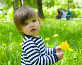 Toddler girl holding yellow flower dandelions — Stock Photo
