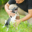 Dark-haired man stroked dog - Stock Photo