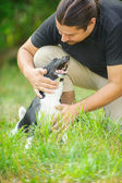 Dark-haired man stroked dog — 图库照片
