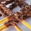 Wheat crossed sticks with chocolate — Stock Photo