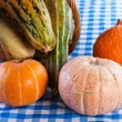 Pumpkins — Stock Photo #8023387