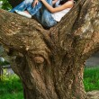 Woman sits on huge tree i — Stock Photo #8501521