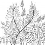 Romantic doodle flower background — Stock Vector #10686950
