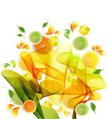Orange, lemon and lime juice splash — Stock Vector