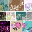 Big set of beautiful floral background — ストックベクタ