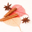 Star anise with cinnamon sticks — Stock Photo