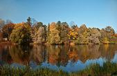 Autumn park — Стоковое фото