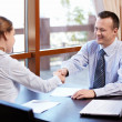 Business Partners — Stock Photo #7995029