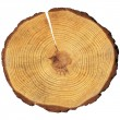 Stock Photo: Wooden circle
