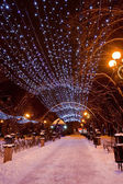 Decorated winter city park — Стоковое фото