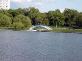 Verão no parque da cidade no dia — Foto Stock