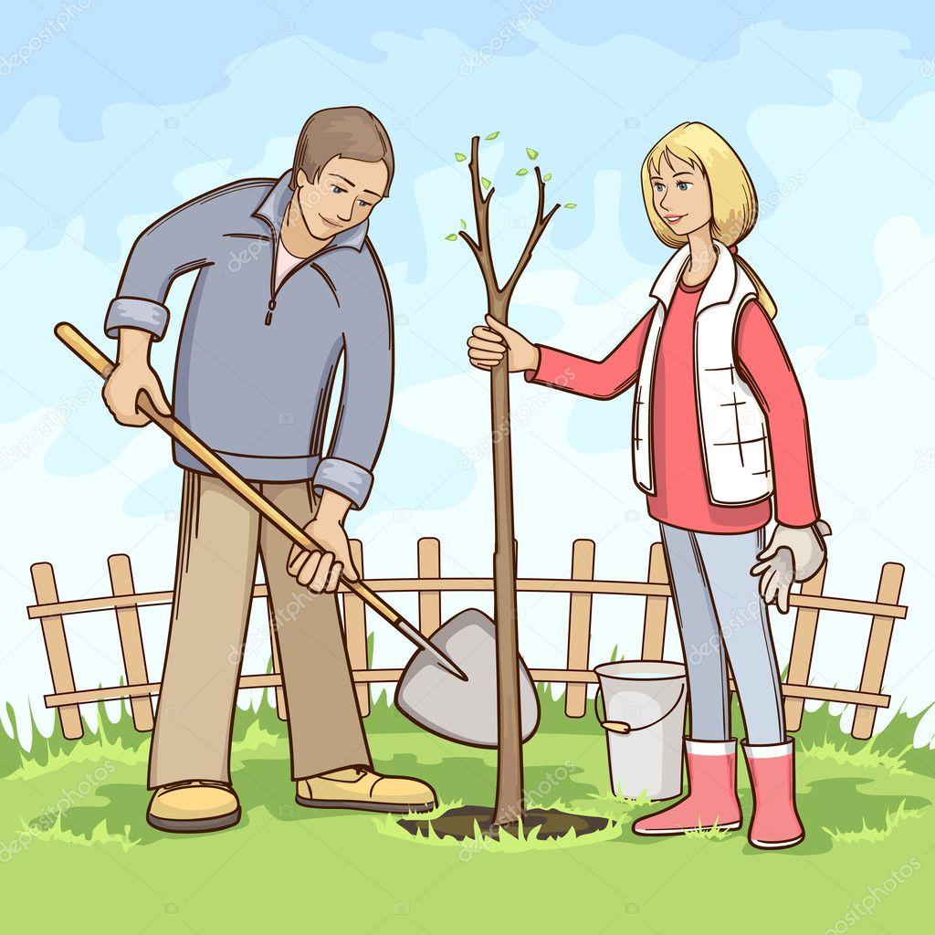 Картинка как сажают дерево 232