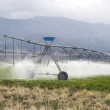 Irrigating Farmland. — Stock Photo