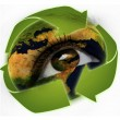 Recycling arrows and earth in eye - Stock Photo