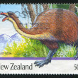 Giant moa - Stock Photo