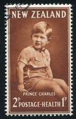 Prince Charles — Stock Photo