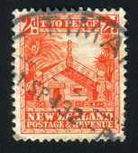 Maison du conseil maori — Photo