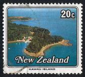 Kawau Island — Stock Photo
